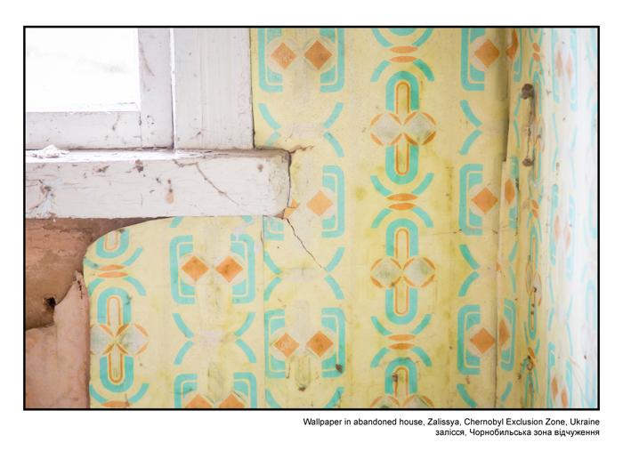 Wallpaper in abandoned house, Zalissya, Chernobyl Exclusion Zone, Ukraine
